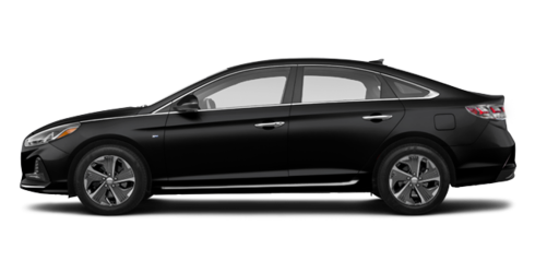 Sonata Hybride Limited 2018